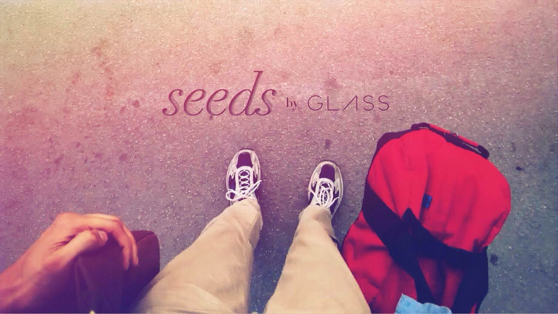Seeds [through Google Glass]