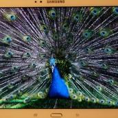 Galaxy Tab S 10.5 - 9