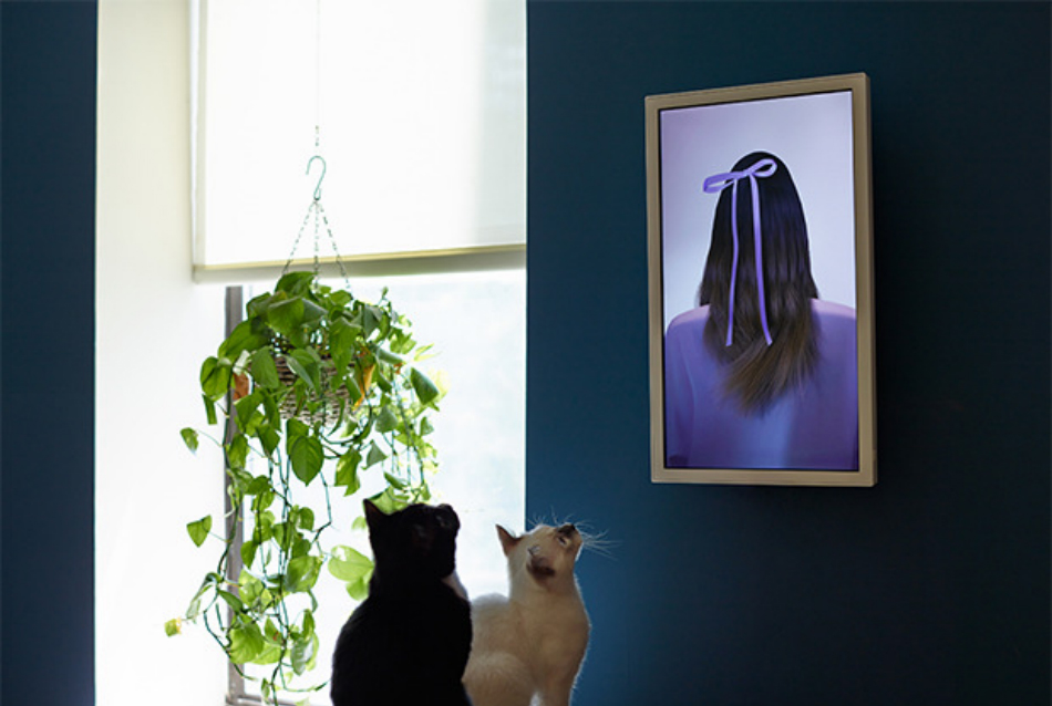 Electric Objects, a Digital Picture Frame That Doesn\'t Suck ...