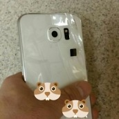 Galaxy S6 Leak 2