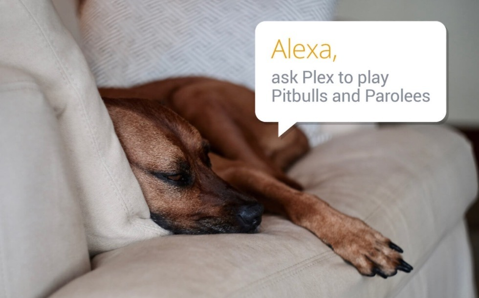Plex Can Now be Controlled Through Amazon Alexa – Droid Life