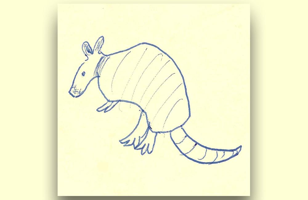 google fuchsia armadillo