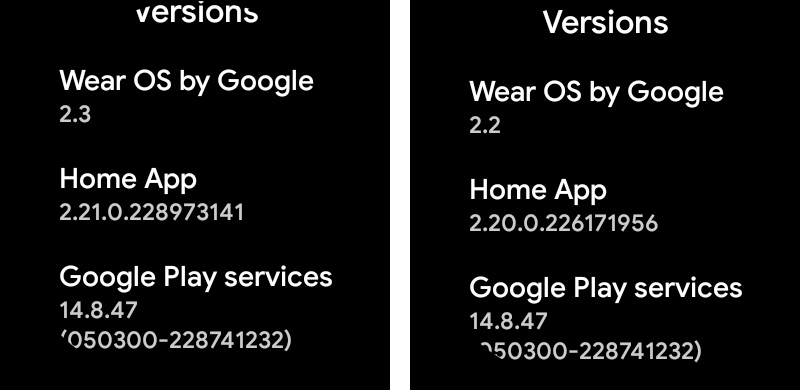 Wear OS 2.3 Update