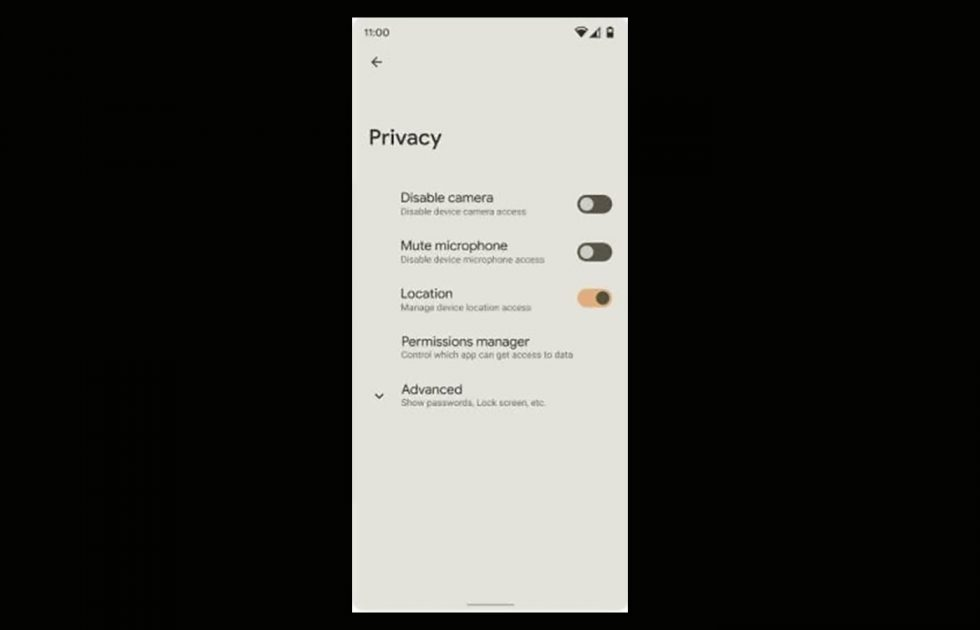 Android 12 Privacy Controls